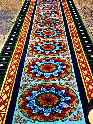 Alfombras de aserrin de guatemala - Mundo alfombra ...